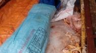 4 tạ thịt gà thối đe dọa bữa cơm người tiêu dùng