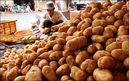 Nông sản Trung Quốc vẫn tràn ngập thị trường